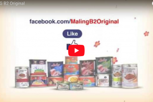 Maling B2 at Robinsons Supermarket's Oriental Festival